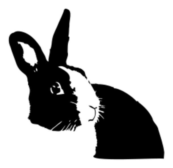 Realistic Bunny SVG